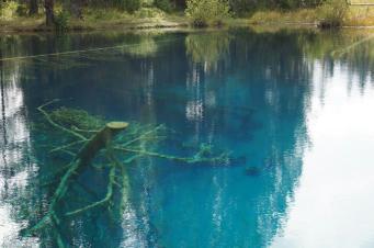 Little Crater Lake. 15 metrus dziļš, bet tik dzidrs, ka redz cauri...