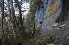 Kaļķakmens klinšu sienas uzkāpienā uz Luxmore Hut.