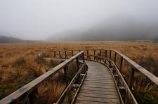 Plašās Gouland Downs tinās lietus miglā.